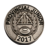 provincial_singles_category_champion_pin